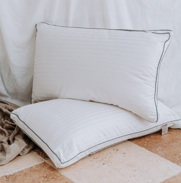 Sleepwise Thermoregulation Pillow